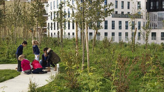 Училище и гимназия със собствена естествена околна среда.