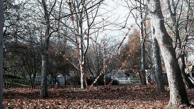 """""""Листопад"""", гр.Бургас - морската градина - Проектирано от ВЕРТИКАЛИ - Архитектурно и интериорно проектиране"""