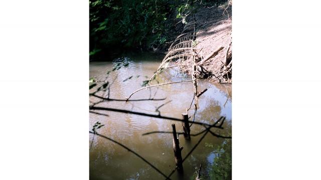 Господаревска река, пл. Странджа